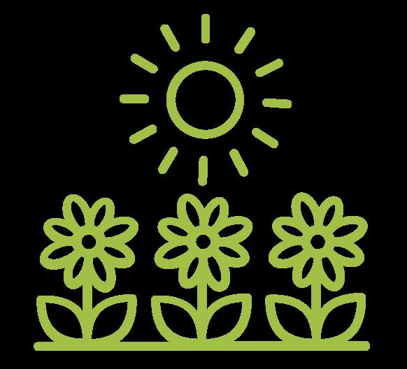 noun horticulture 1047597